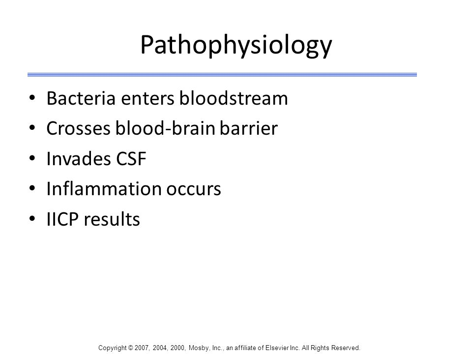 Pathophysiology Bacteria enters bloodstream