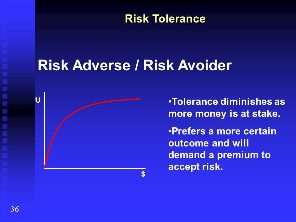 Risk Adverse / Risk Avoider