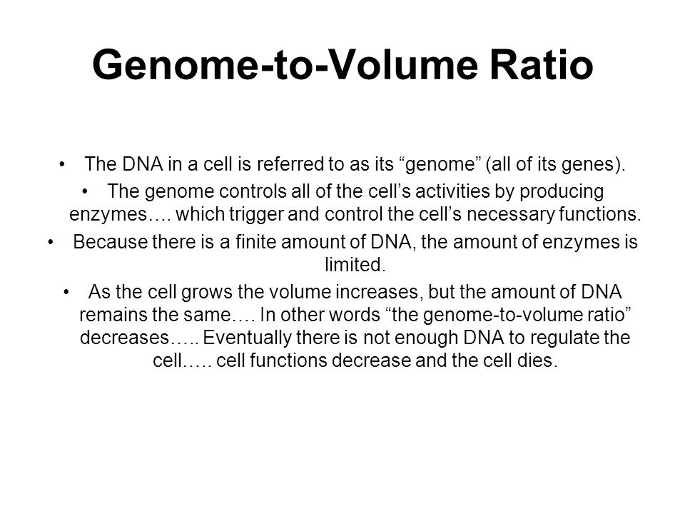 Genome-to-Volume Ratio