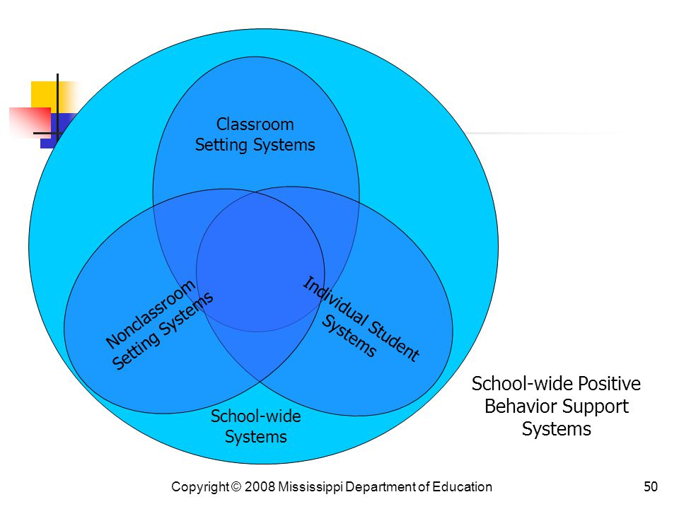 School-wide Positive Behavior Support Systems Classroom