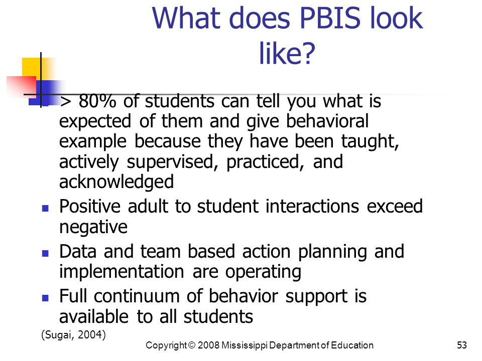 What does PBIS look like