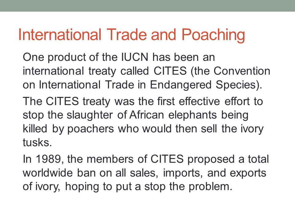 International Trade and Poaching