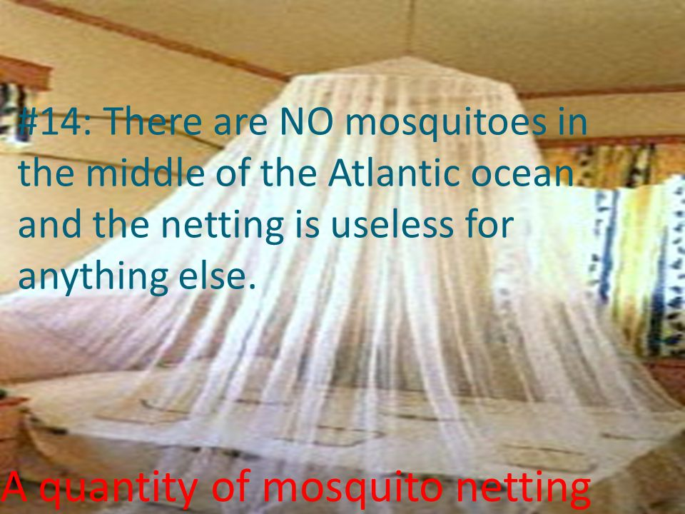 A quantity of mosquito netting