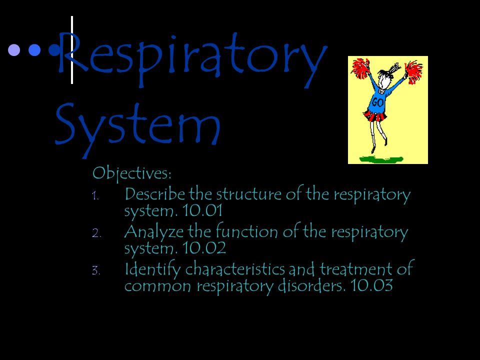 Respiratory System Objectives: