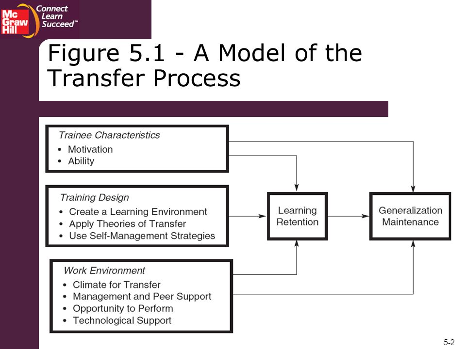 Figure 5.1 - A Model of the Transfer Process