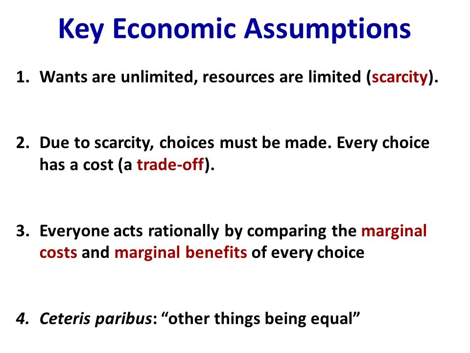 Key Economic Assumptions