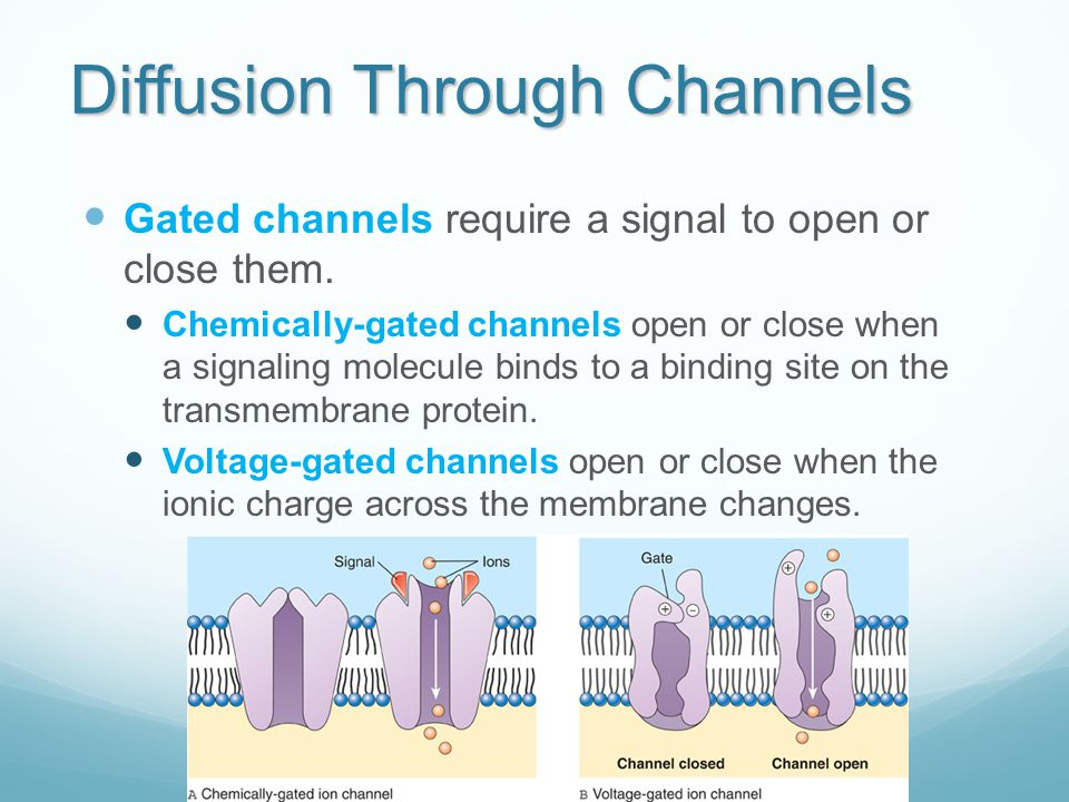 Diffusion Through Channels