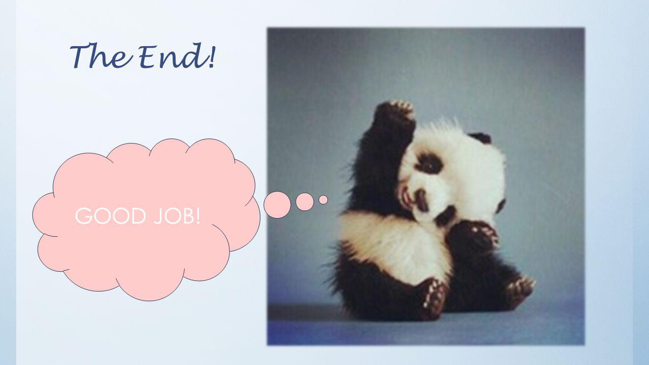 The End! GOOD JOB!