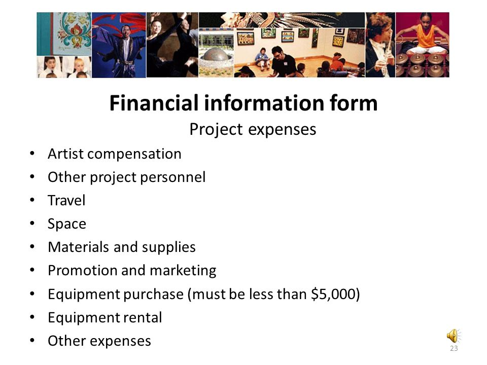 Financial information form Project expenses