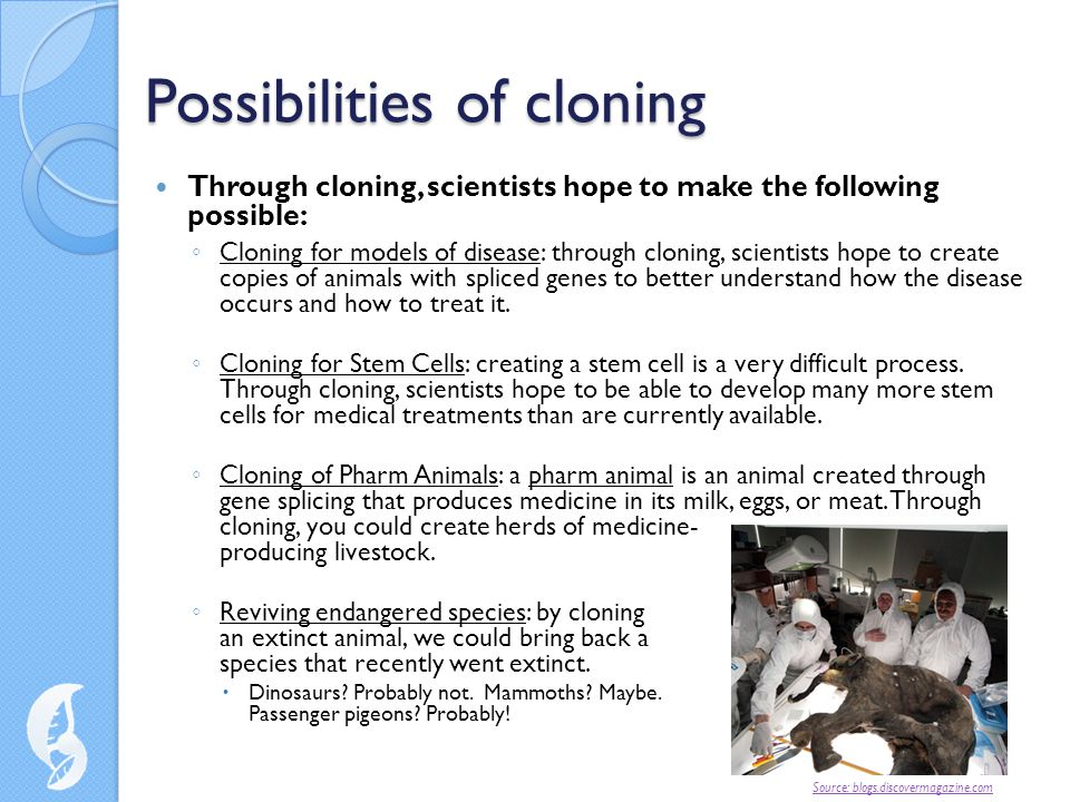 Possibilities of cloning