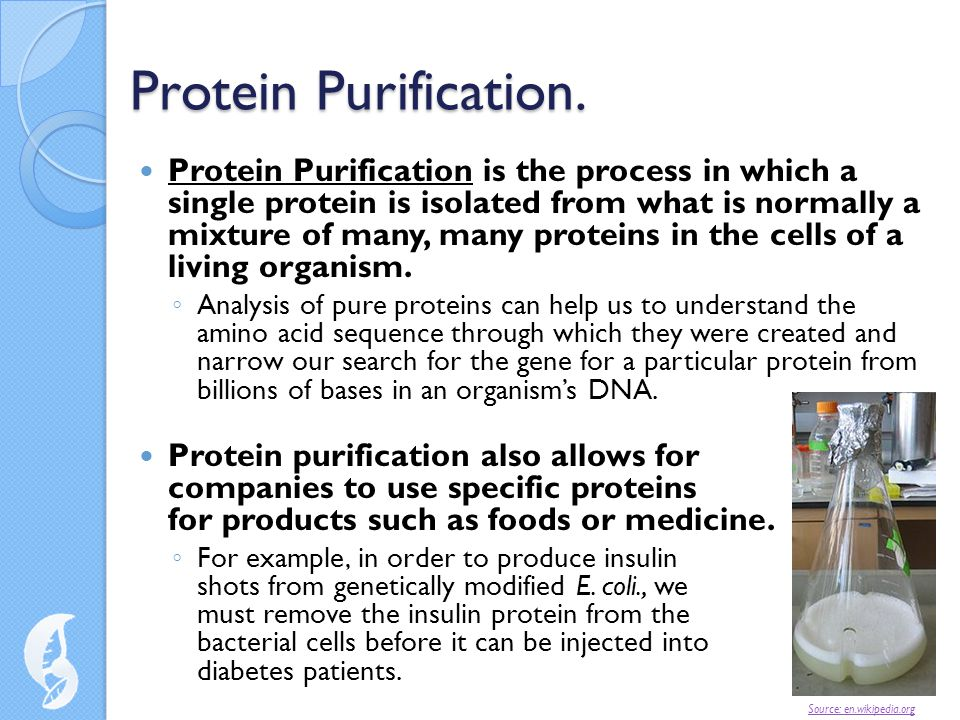 Protein Purification.
