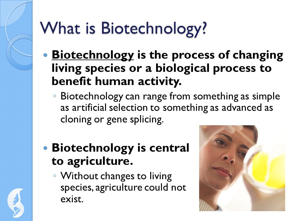 What is Biotechnology Biotechnology is the process of changing living species or a biological process to benefit human activity.