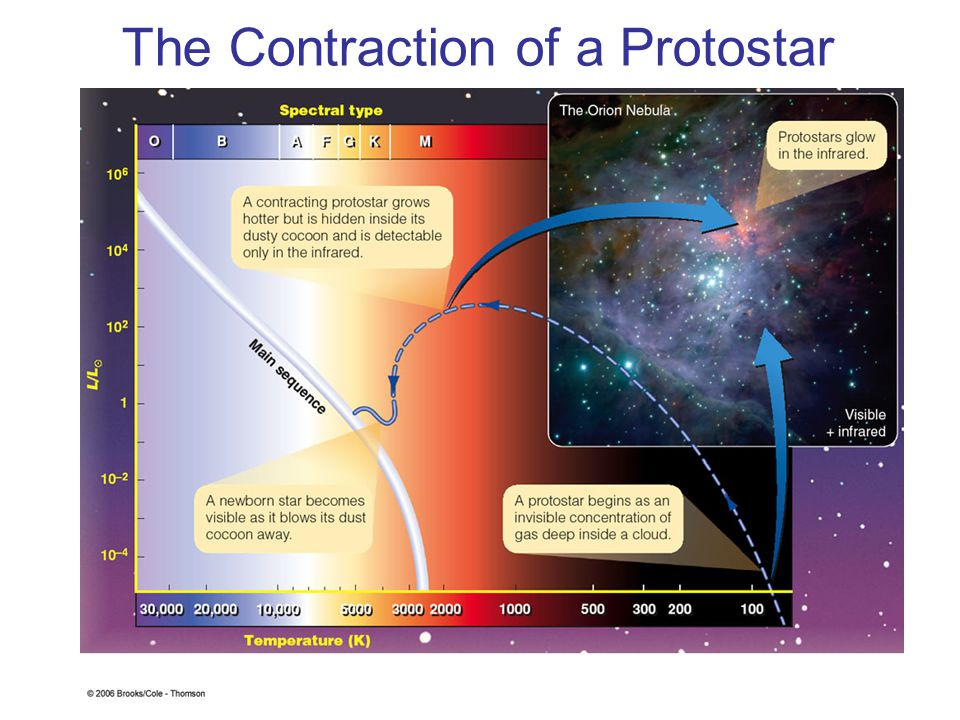 The Contraction of a Protostar
