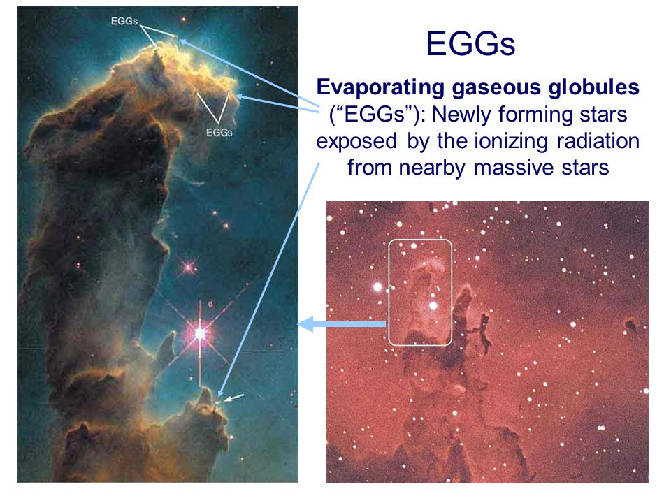 EGGs Evaporating gaseous globules ( EGGs ): Newly forming stars exposed by the ionizing radiation from nearby massive stars.