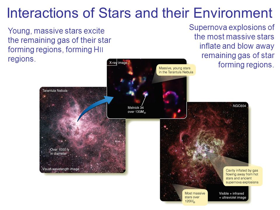 Interactions of Stars and their Environment