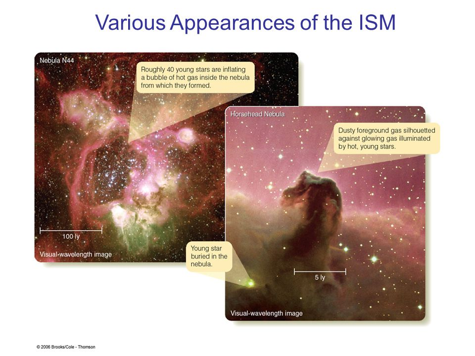 Various Appearances of the ISM