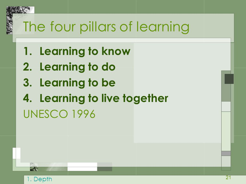 The four pillars of learning