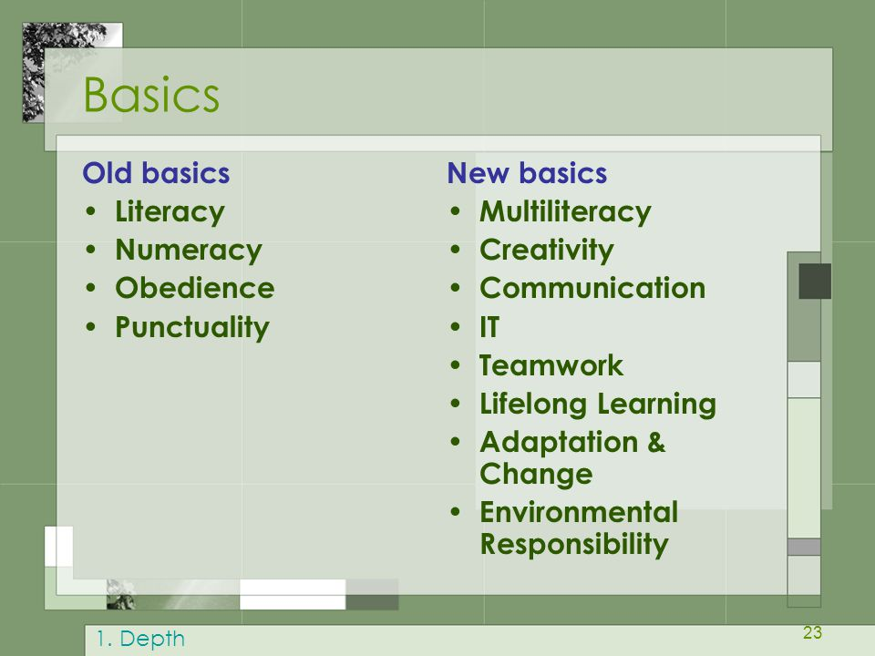 Basics Old basics Literacy Numeracy Obedience Punctuality New basics