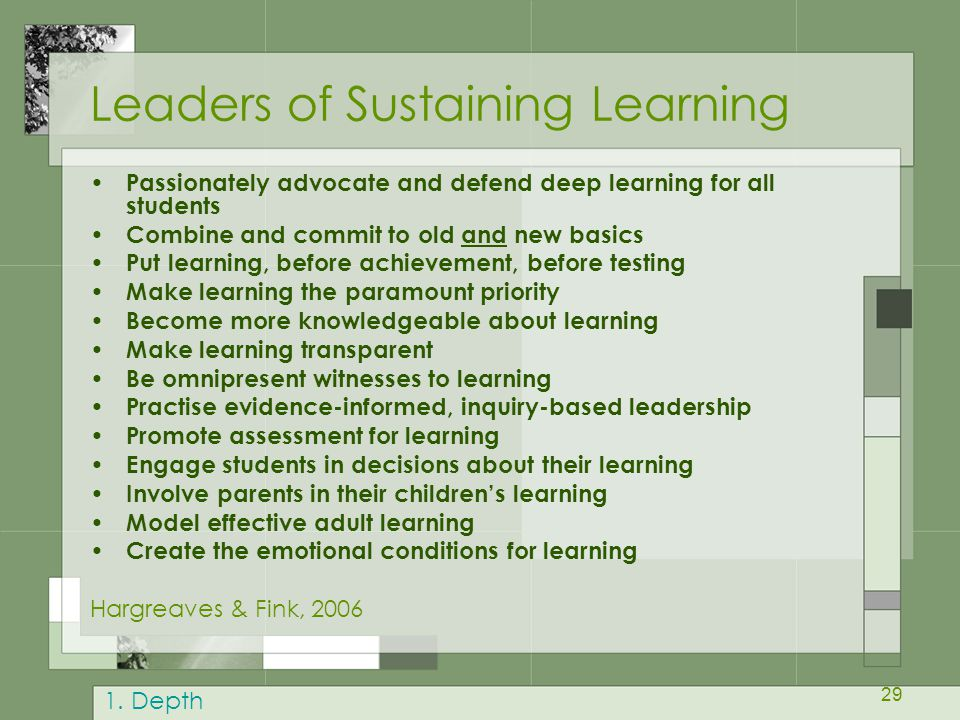 Leaders of Sustaining Learning