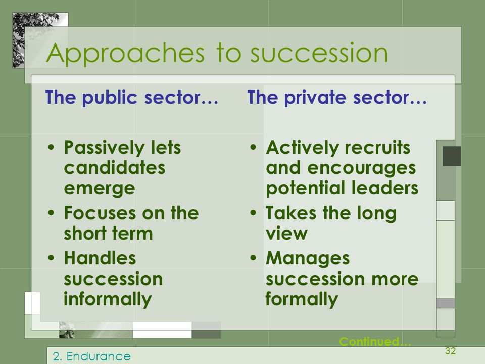 Approaches to succession