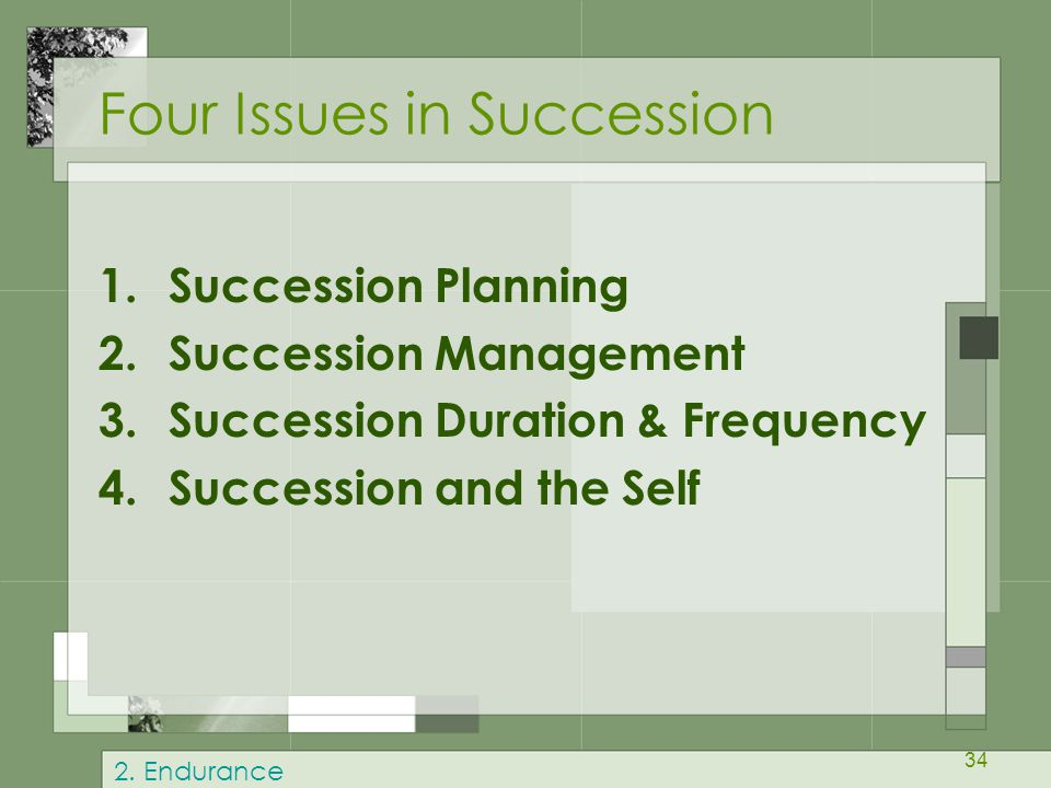Four Issues in Succession