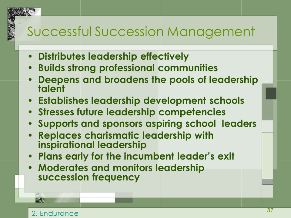 Successful Succession Management