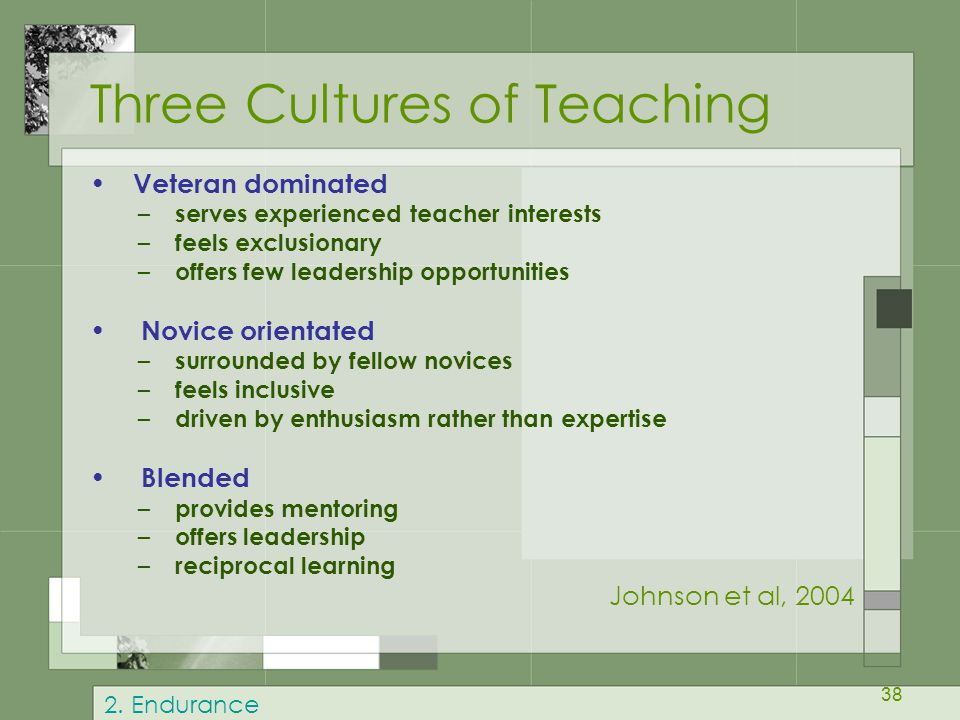 Three Cultures of Teaching