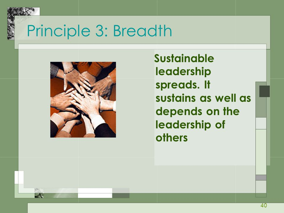 Principle 3: Breadth Sustainable leadership spreads.