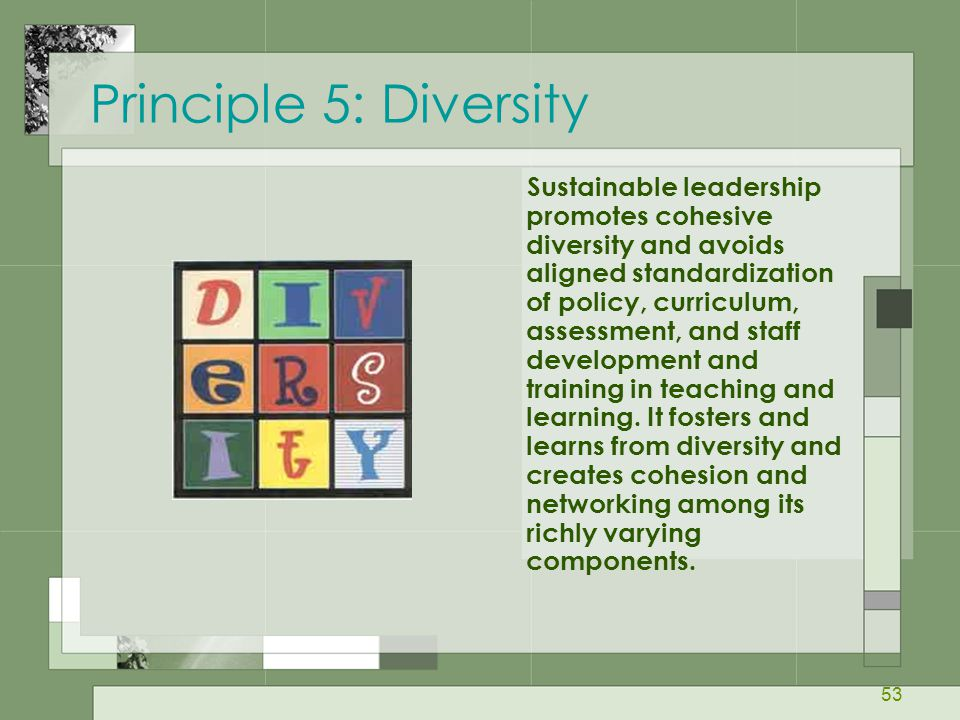 Principle 5: Diversity