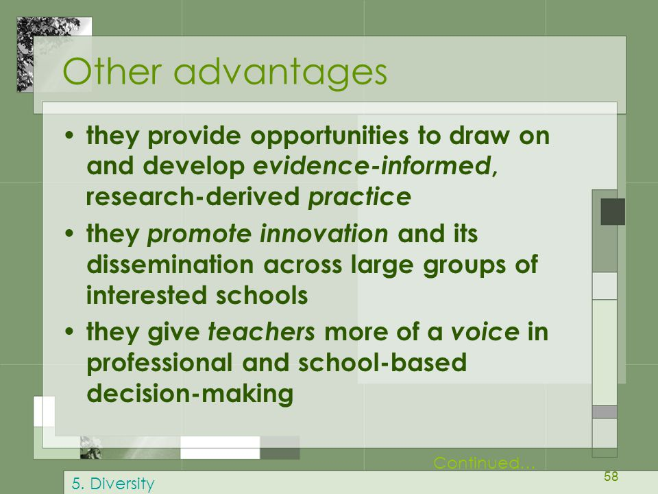 Other advantages they provide opportunities to draw on and develop evidence-informed, research-derived practice.
