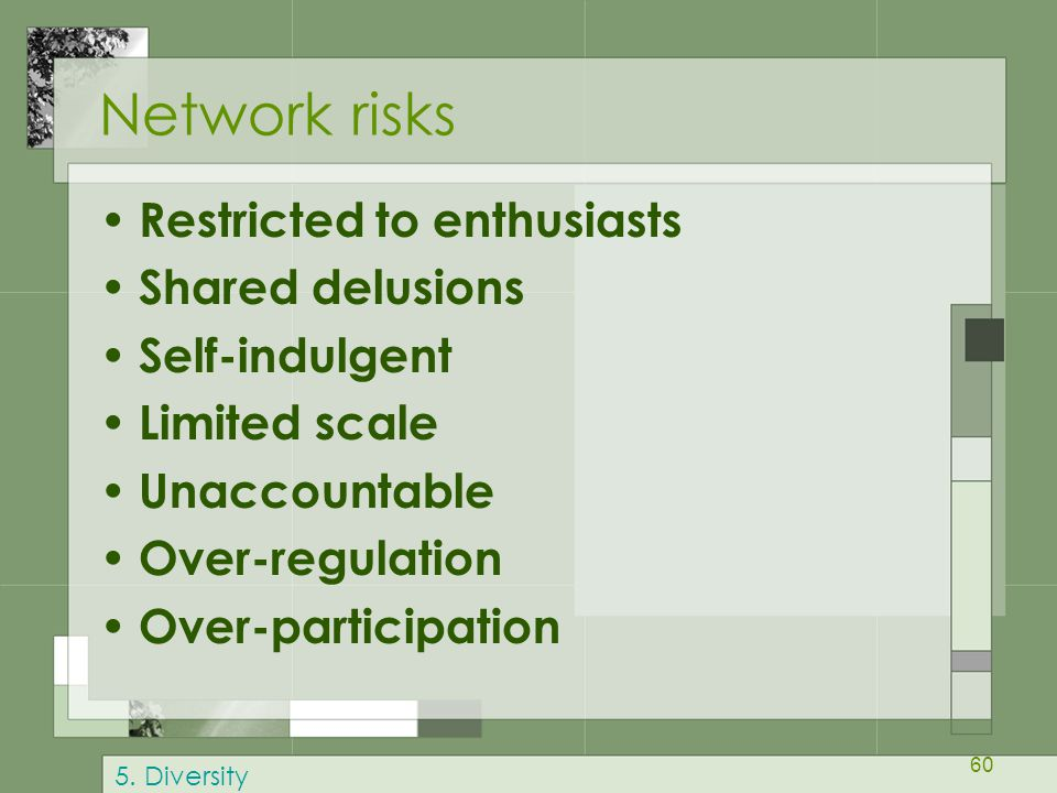 Network risks Restricted to enthusiasts Shared delusions
