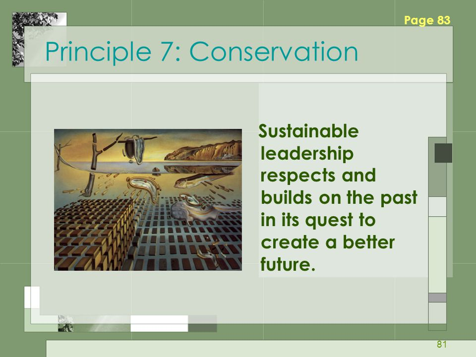 Principle 7: Conservation
