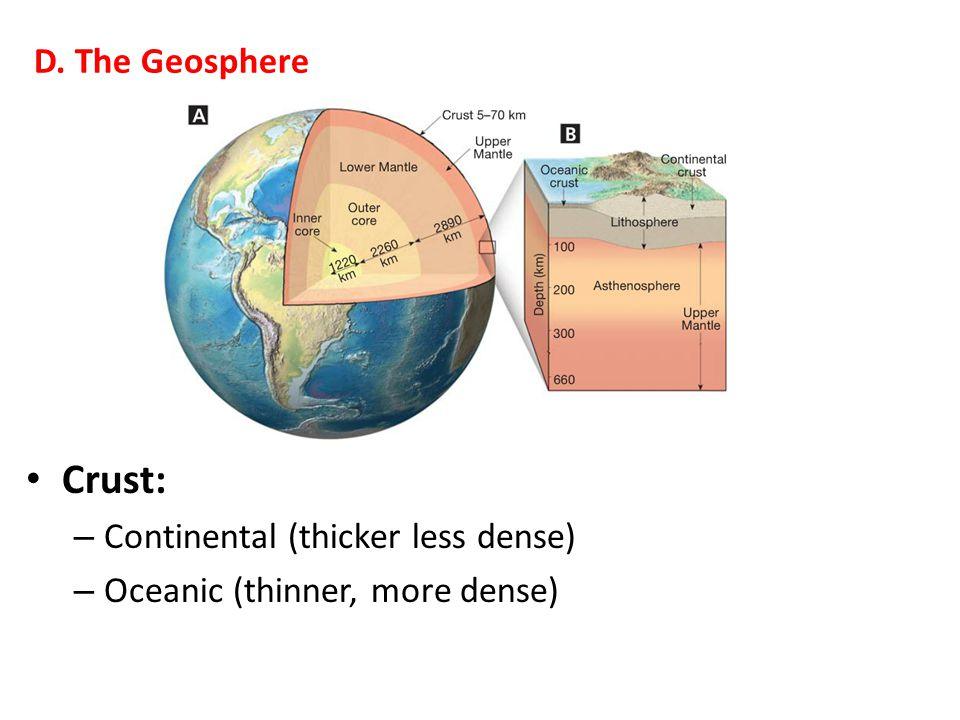 Crust: D. The Geosphere Continental (thicker less dense)