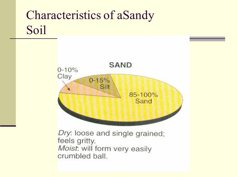 Characteristics of aSandy Soil