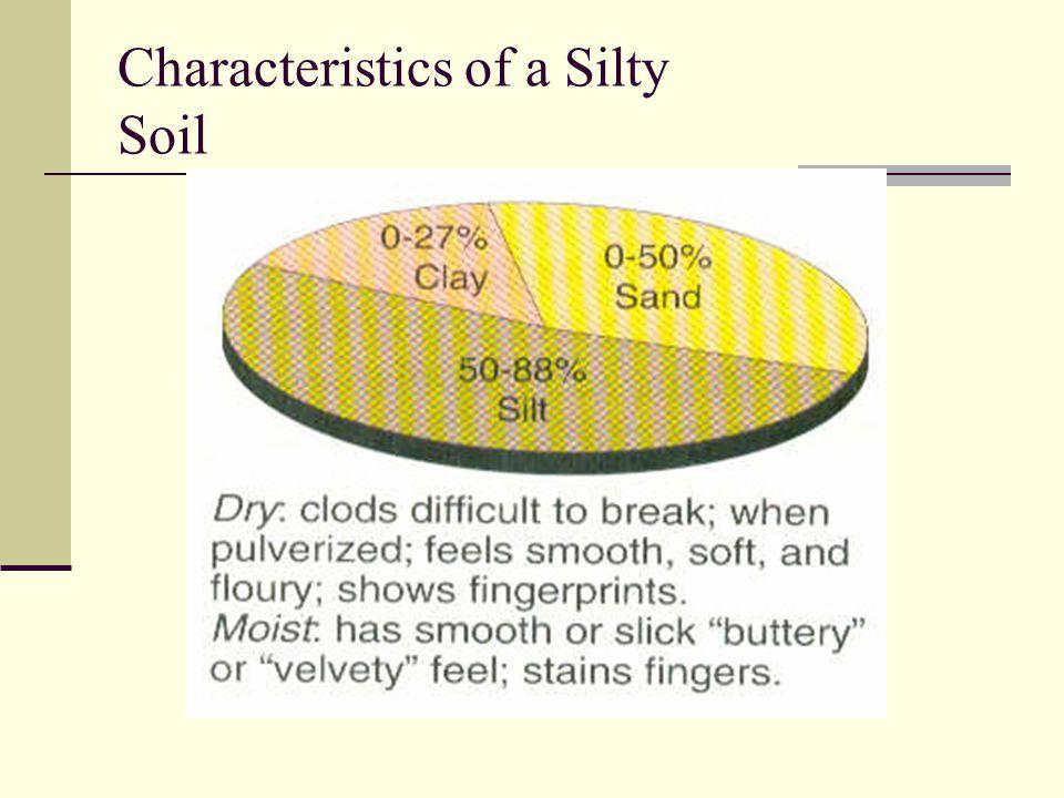 Characteristics of a Silty Soil