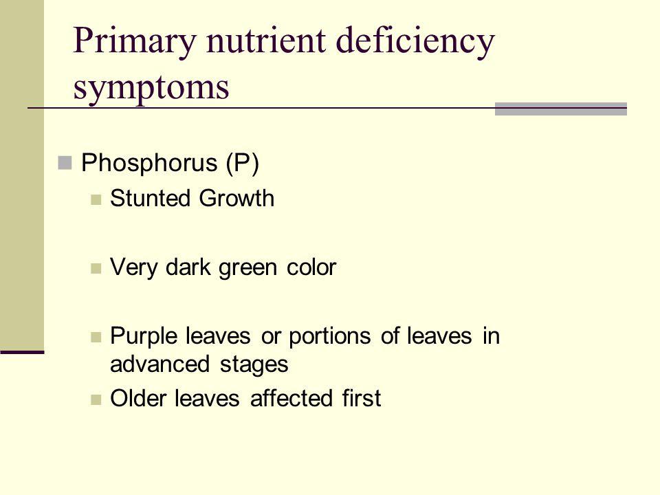 Primary nutrient deficiency symptoms
