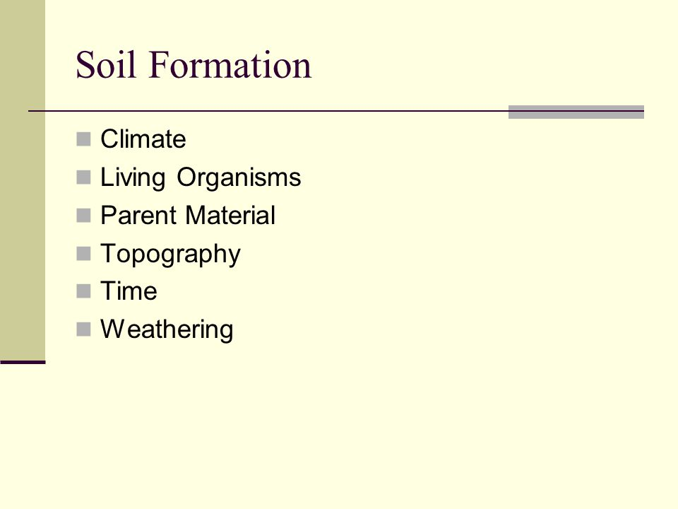 Soil Formation Climate Living Organisms Parent Material Topography