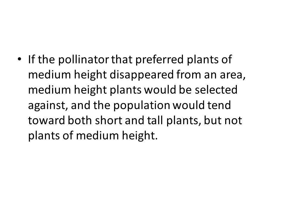 If the pollinator that preferred plants of medium height disappeared from an area, medium height plants would be selected against, and the population would tend toward both short and tall plants, but not plants of medium height.