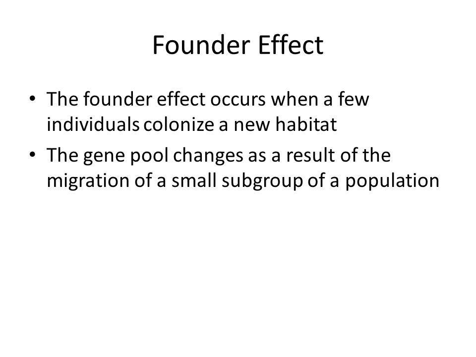 Founder Effect The founder effect occurs when a few individuals colonize a new habitat.