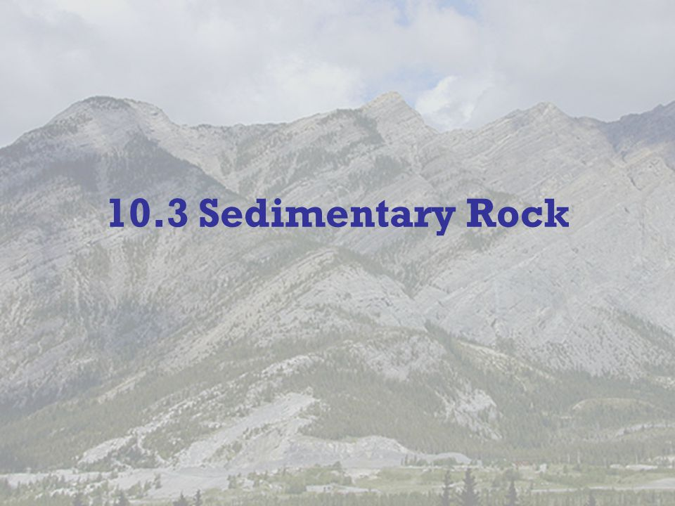 10.3 Sedimentary Rock