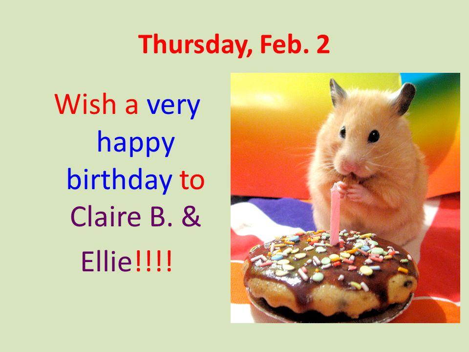 Wish a very happy birthday to Claire B. &