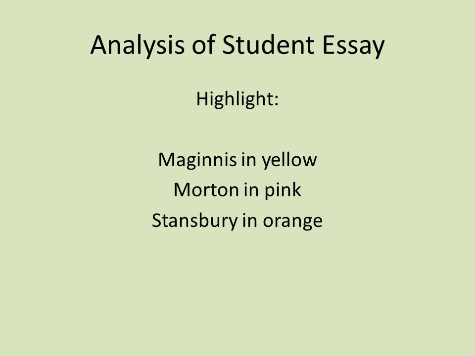 Analysis of Student Essay
