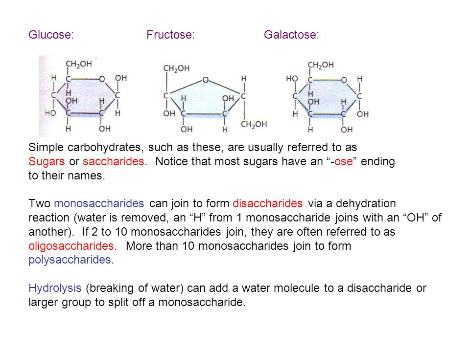 Glucose: Fructose: Galactose: