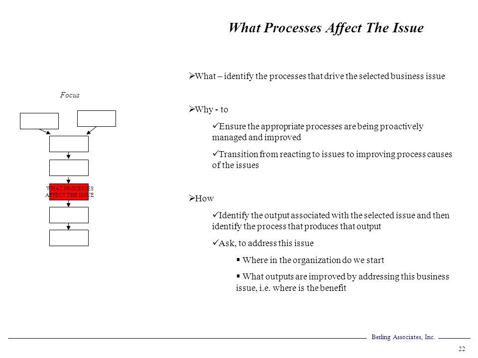 WHAT PROCESSES AFFECT THE ISSUE