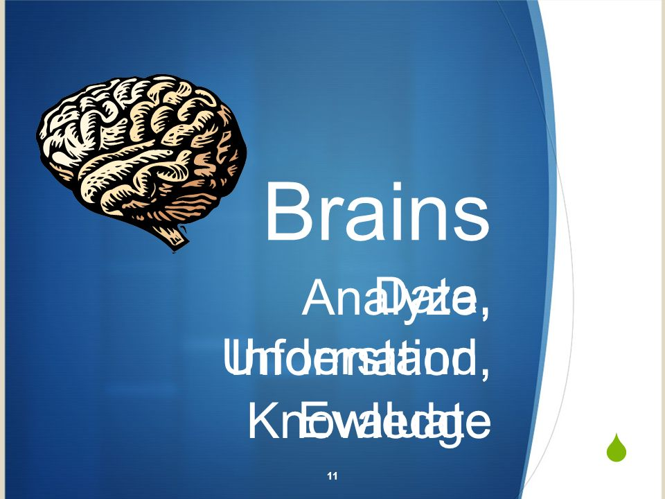 Brains Data, Information, Knowledge Analyze, Understand, Evaluate