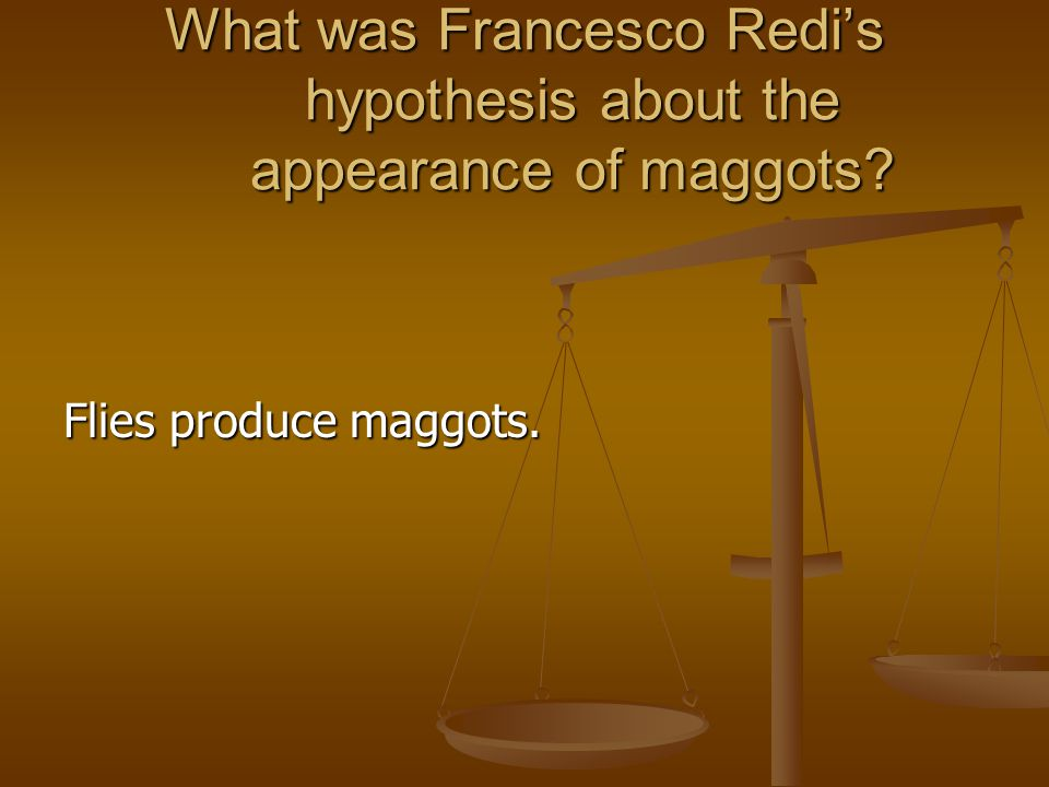 What was Francesco Redi's hypothesis about the appearance of maggots
