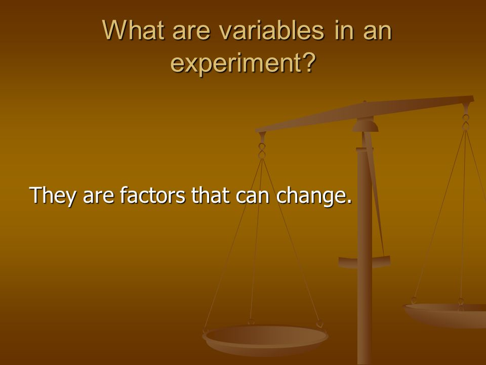 What are variables in an experiment