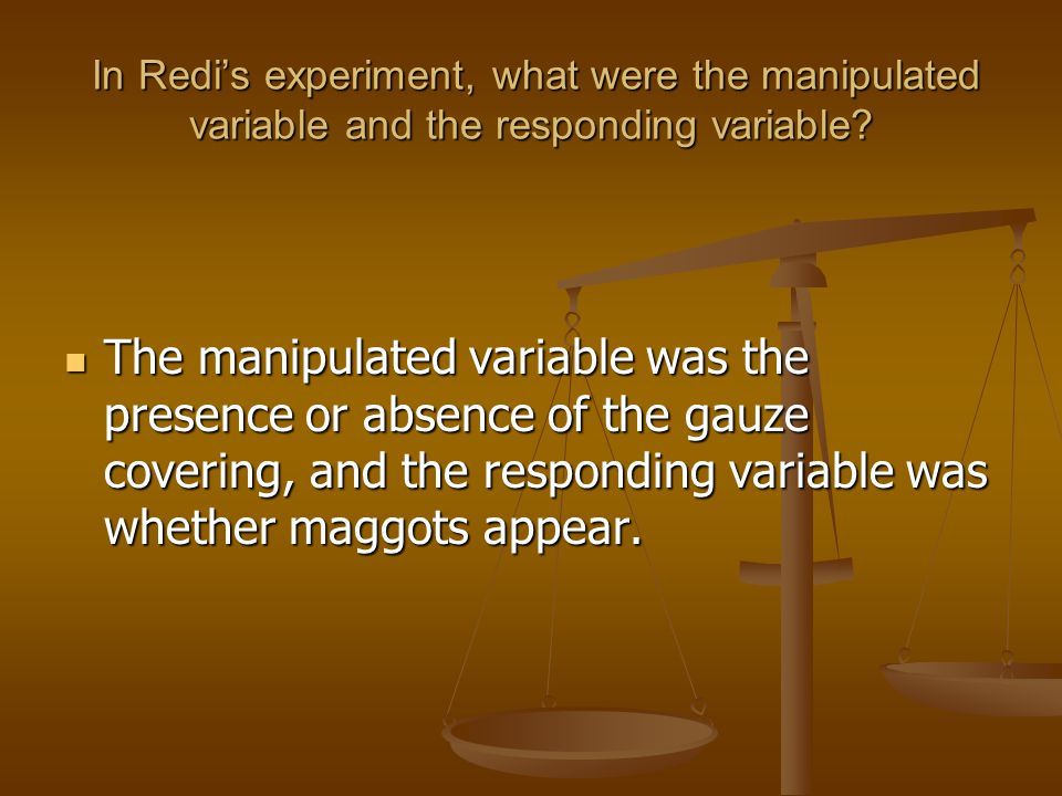 In Redi's experiment, what were the manipulated variable and the responding variable