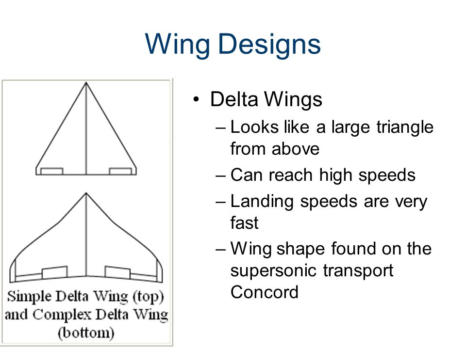 Wing Designs Delta Wings Looks like a large triangle from above