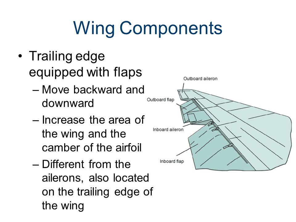 Wing Components Trailing edge equipped with flaps